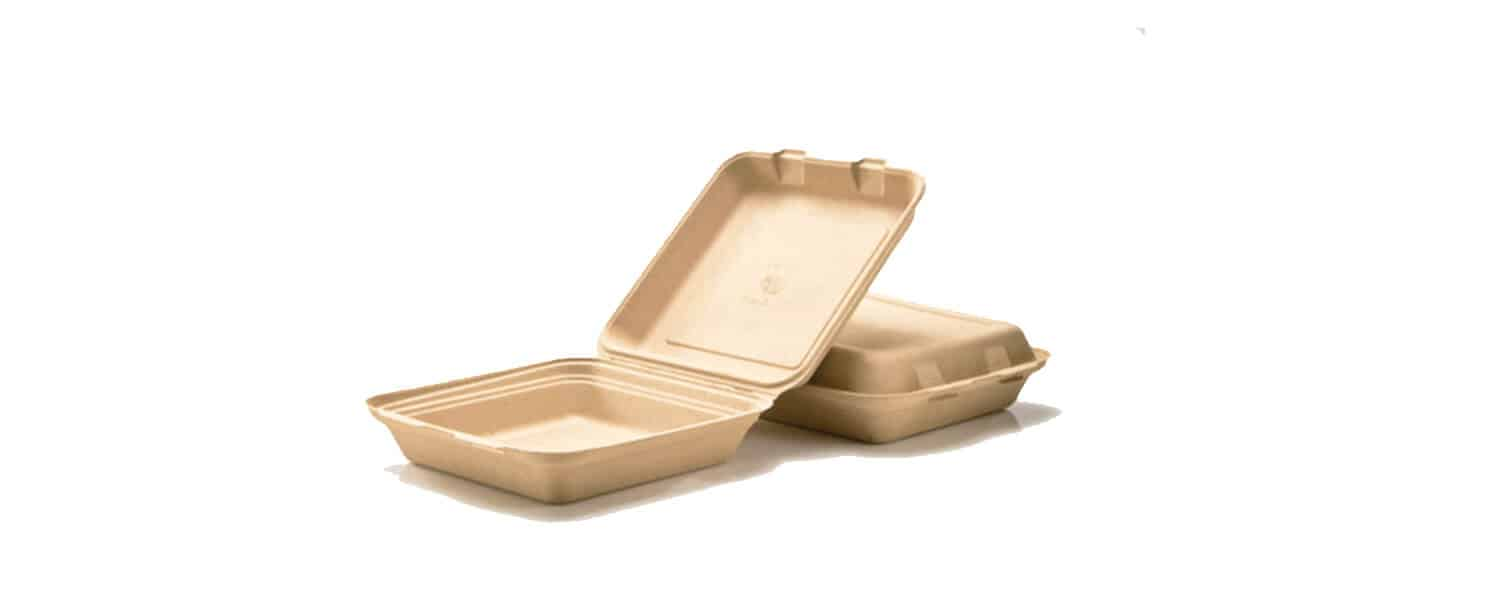 Biodegradable food boxes