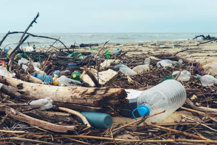 How Plastic Is Damaging Our Environment